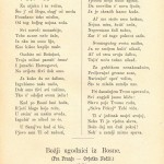 1889-03-01-43 Glasnik JF Kapetanovic Ljubusak ad Rudolf